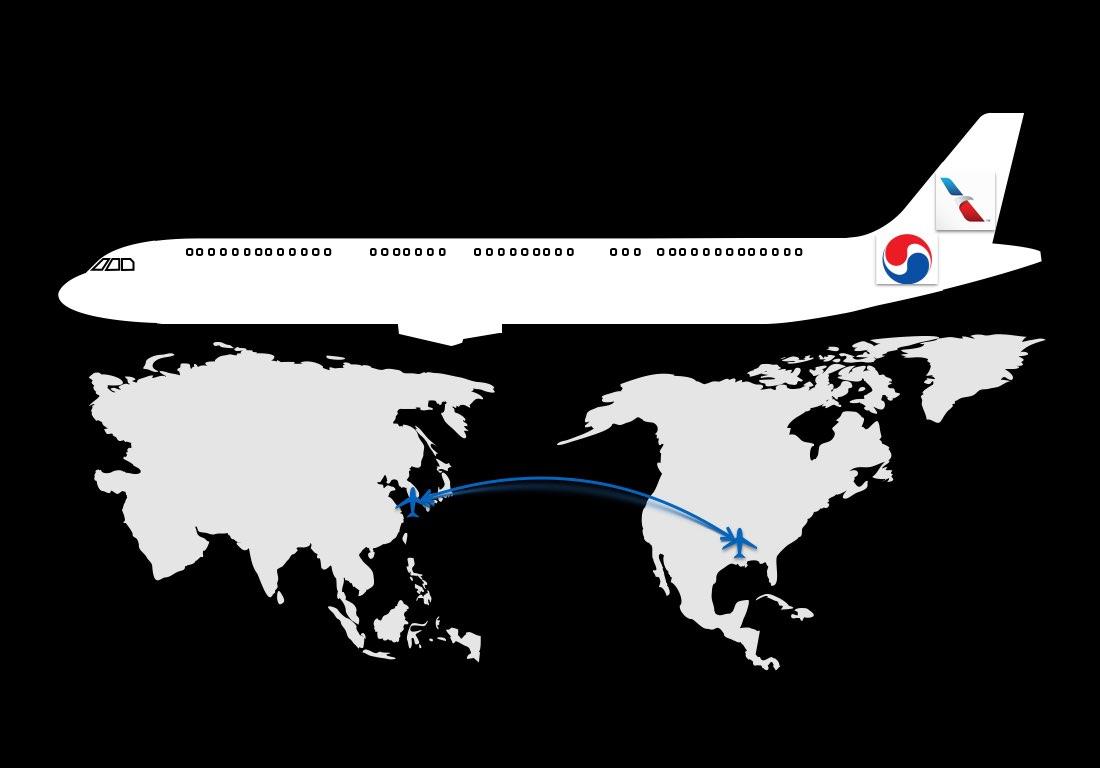 Dallas - Seoul Codeshare American Korean Air